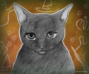 GA_Black Cat Costume